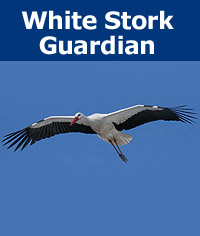 Donation - White Stork Guardian